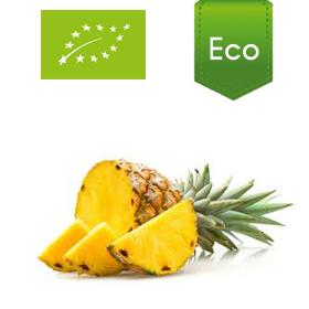 pina-ecologica
