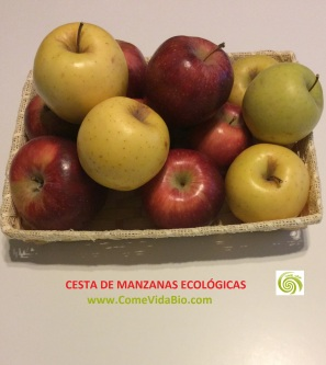 Cesta de Manzanas Bio 9