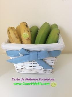 Centro de Plátanos Bio